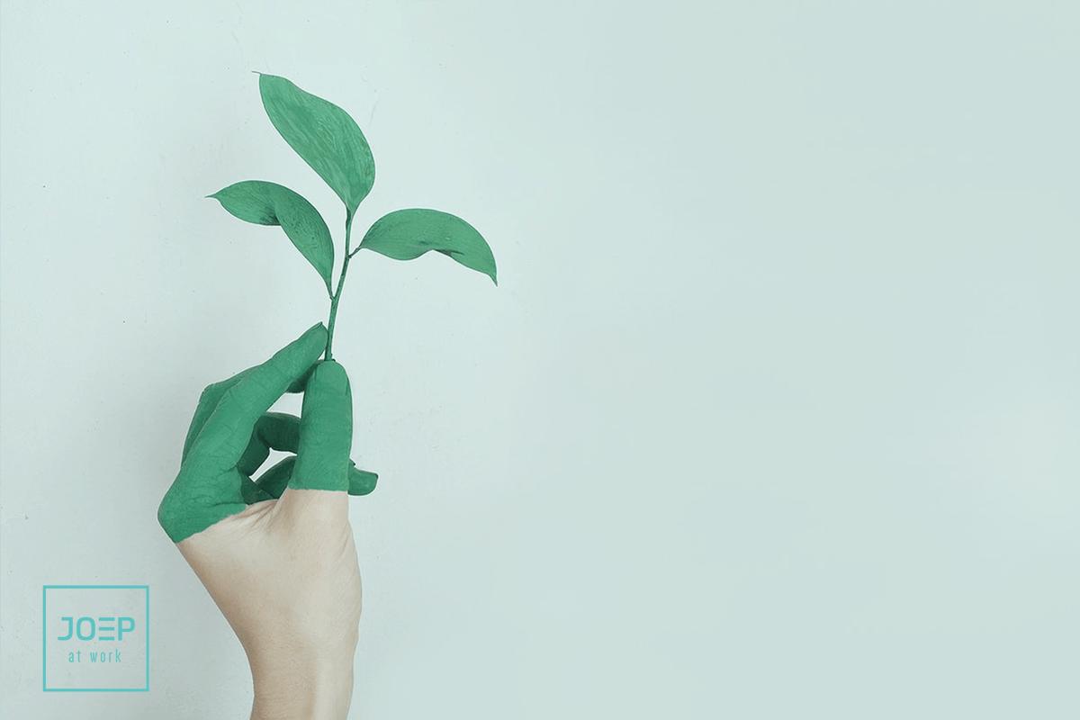 Vacature Internationaal Projectmanager Duurzaamheid